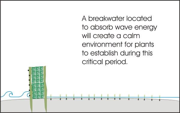 3 sand bar breakwater (600 x 377)